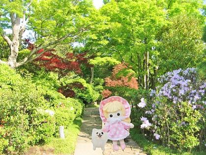 和庭園の入口です