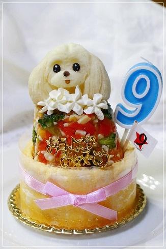 ワフさんの9歳・すももんケーキ☆
