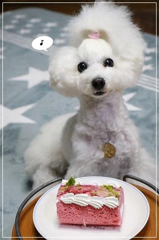 忘れてたけどケーキを何とかそろえたよ!