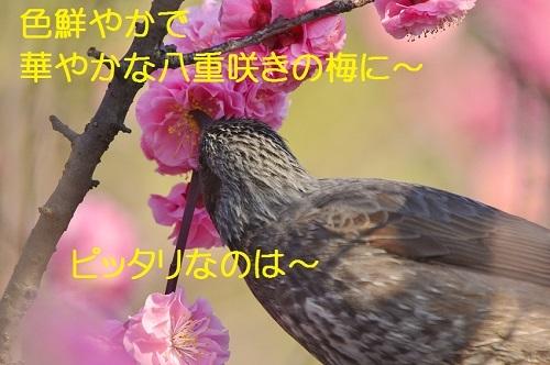 026_2018040119254844e.jpg