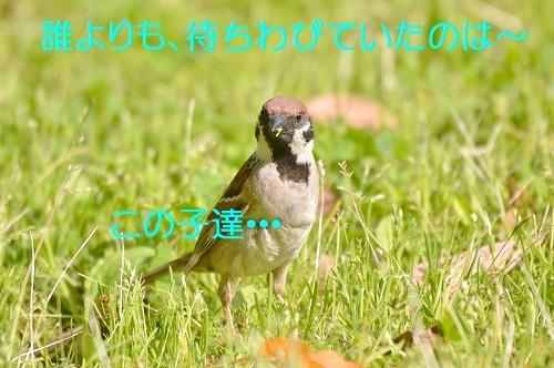 040_20180507210524f7b.jpg