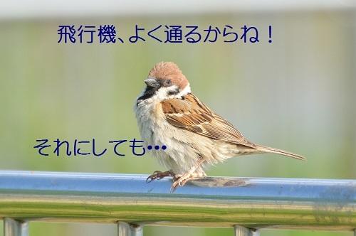 070_201805132123219ac.jpg