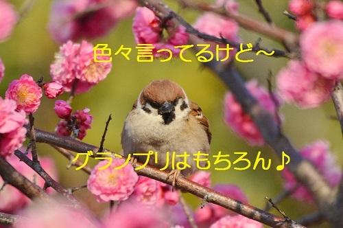 110_201804011931128f4.jpg