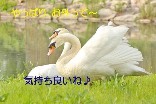 120_201805072113331c7.jpg