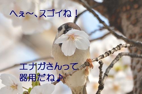 130_20180331204159449.jpg