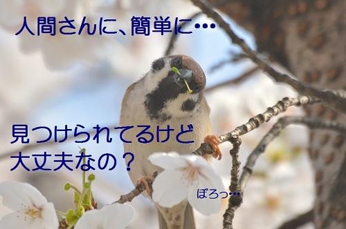 140_20180331204201e07.jpg