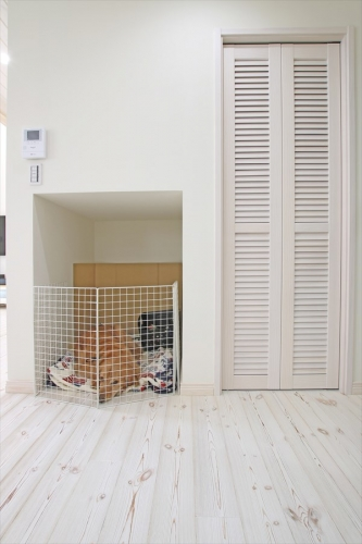 dogspace_swedenhome_x14.jpg