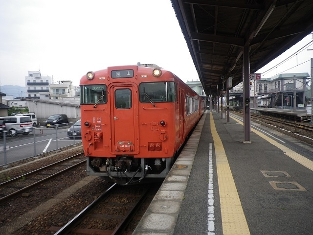 IMGP8715.jpg
