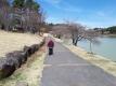 明神池の周りをウォーキング
