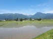 乳川からに景色
