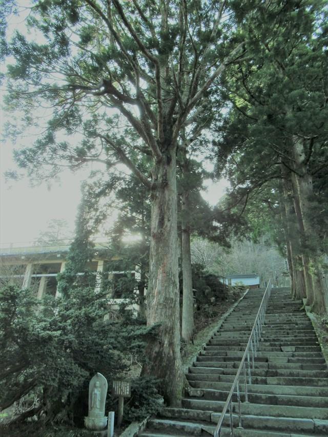 大山寺本堂5