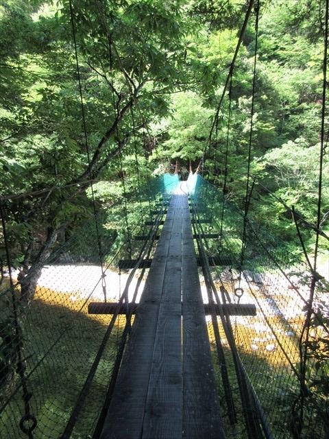 板取キャンプ場の吊橋5