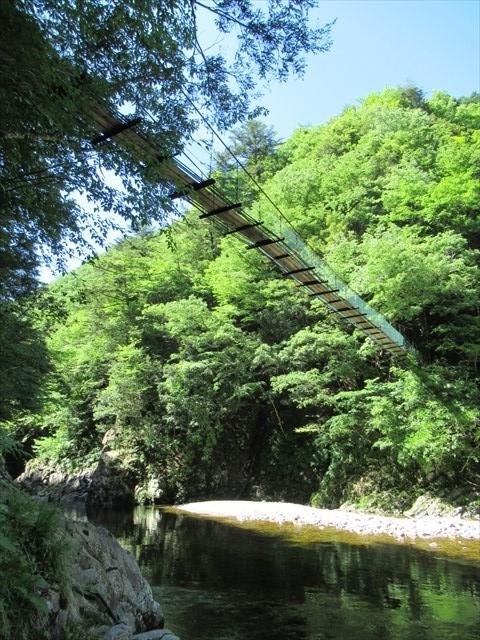 板取キャンプ場の吊橋2
