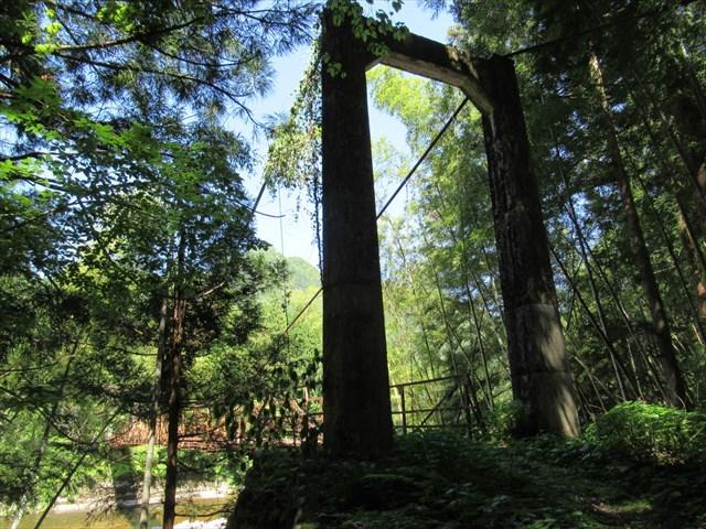 板取松場の吊橋6