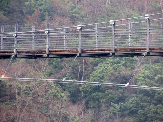 """舌震の""""恋""""吊り橋6"""
