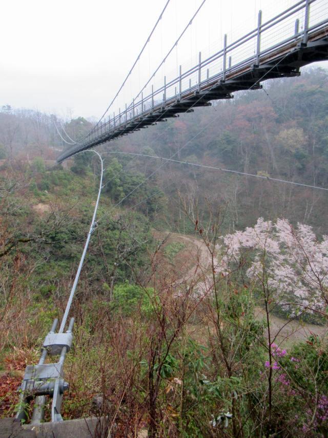 """舌震の""""恋""""吊り橋4"""