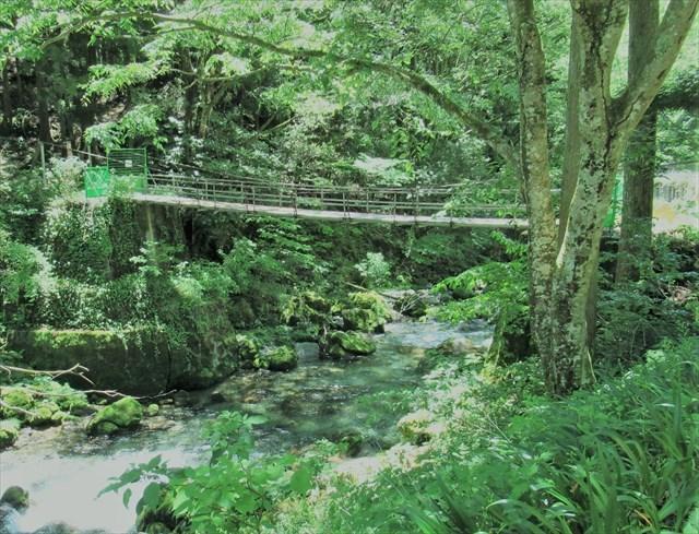 円原の吊橋2
