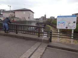 花田橋からの放流
