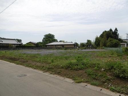 小野崎989-11