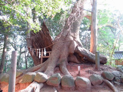 住吉神社29