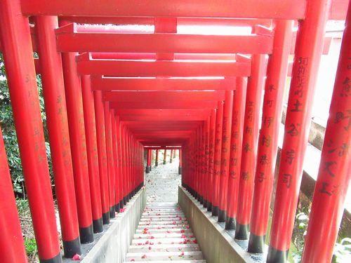 赤間神社41