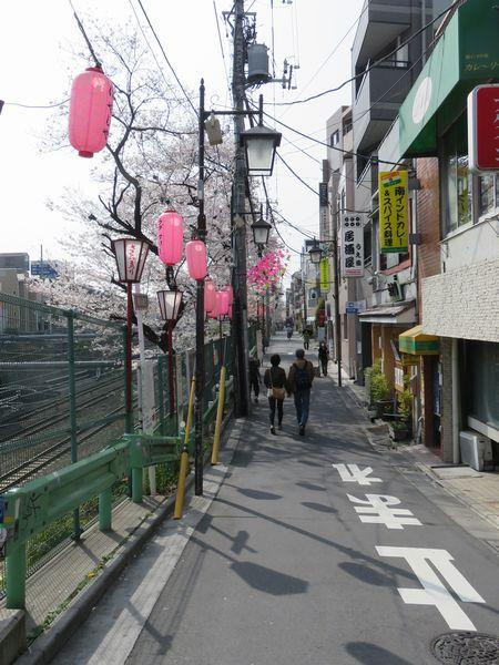東中野駅西口前から中野駅方面に向かって続く桜並木
