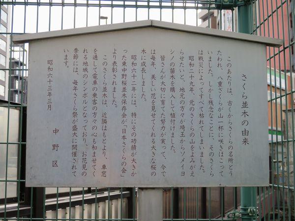桜並木の前にある植樹の経緯に関する説明板