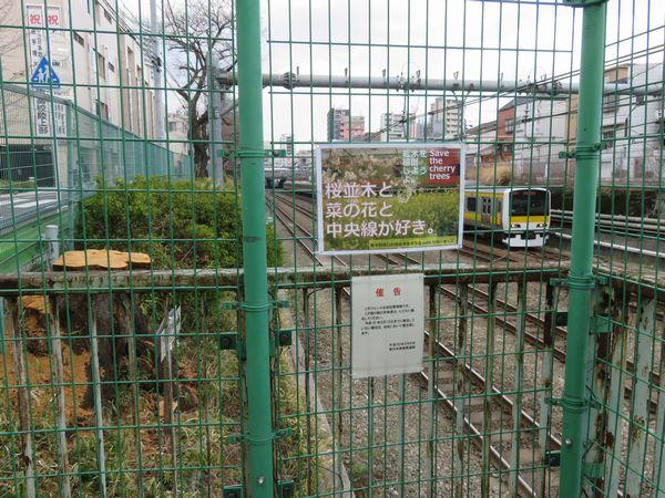 桜並木沿いのフェンスには周辺住民により伐採に反対するアピールが掲出されている