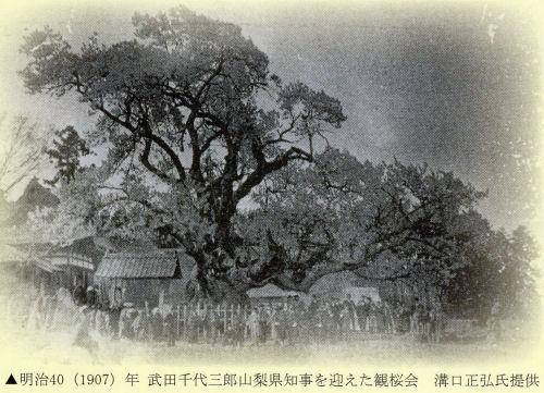 180401yama07.jpg