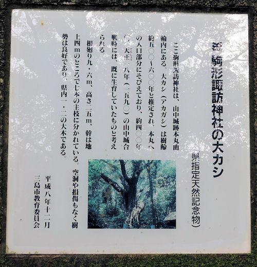 180501yama26.jpg