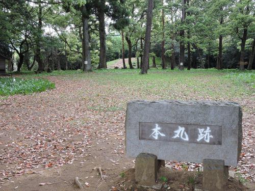 180505odawara20.jpg