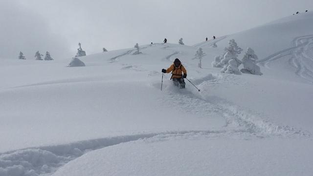 13新雪滑降