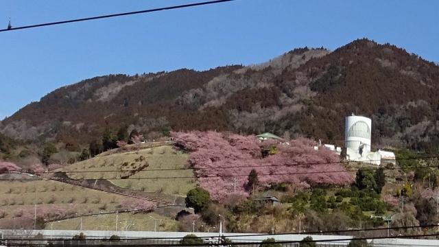 2松田駅から松田山を望む
