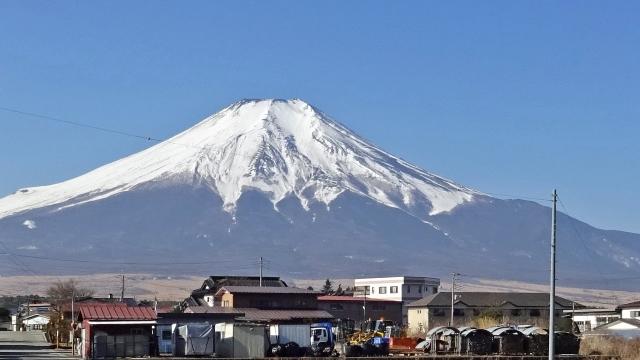 3内野から富士山を見上げる