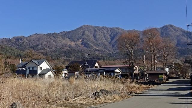 4内野から杓子山を見上げる