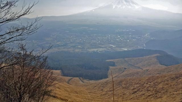 8高座山からの富士山と葦の原