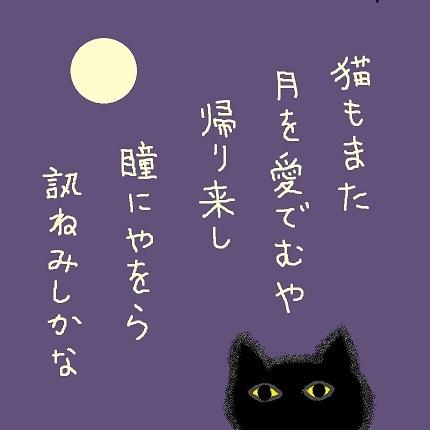 猫もまた1 - コピー
