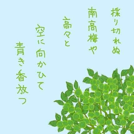 青き香1 - コピー