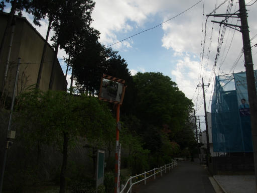 20180408・夏近し近所の散歩1-24