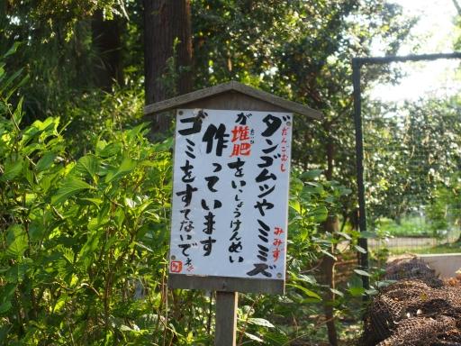 20180428・鶴瀬ネオン04