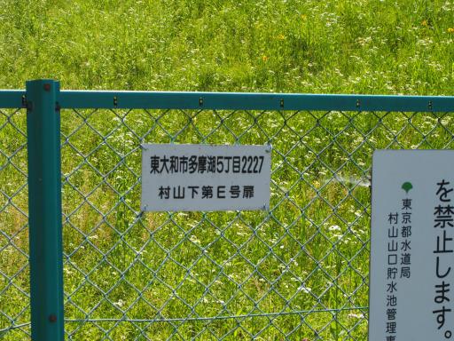 20180603・上北台に行くつもりが3-13