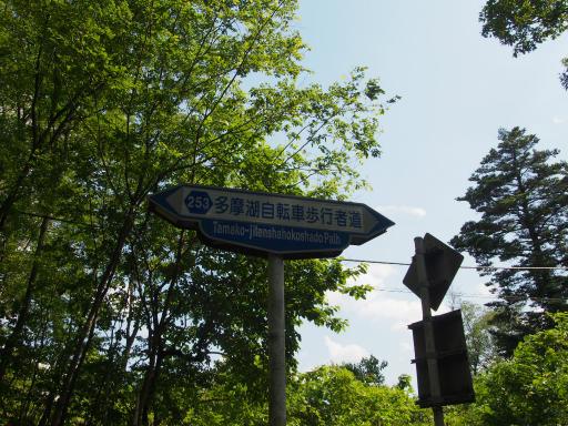 20180603・上北台に行くつもりが3-24