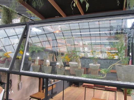 温室のある鉄好きの庭0001