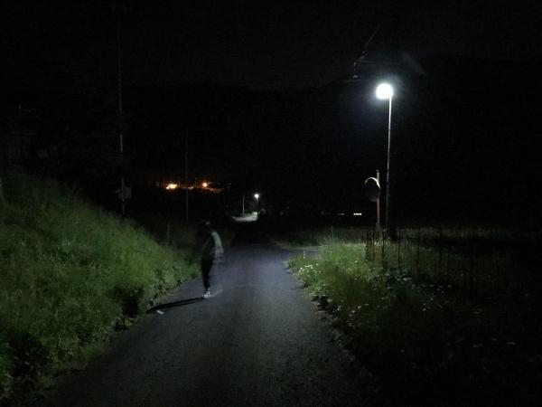 180504-熊の散歩
