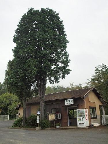 P1016751.jpg