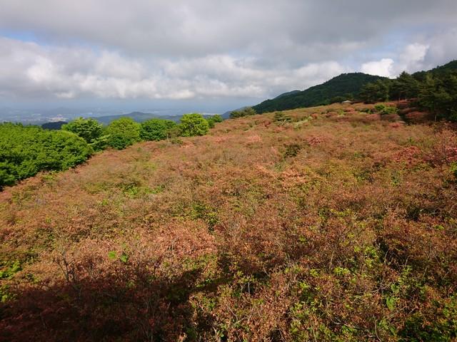 s徳仙丈山12