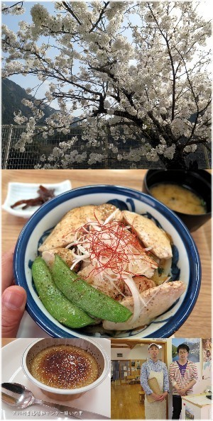 okawa20180331.jpg