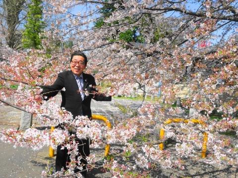 「国分寺の桜」③_R