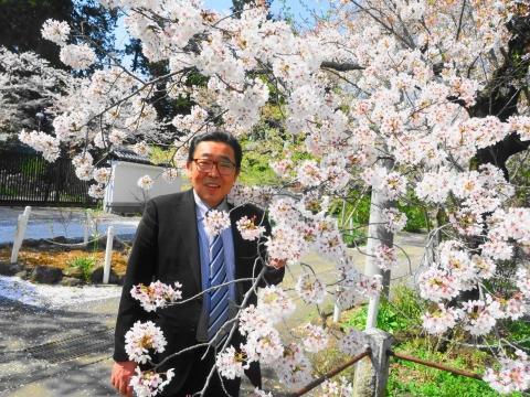 「国分寺の桜」④_R