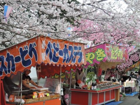「国分寺の桜」④1